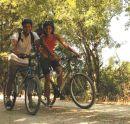 b_130_0_16777215_00_images_stories_turismo_bike-bird.jpg