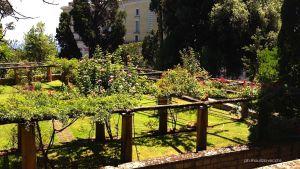 Roseto dei giardini bassi
