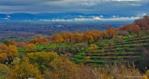 Monti Cimini, versante nord