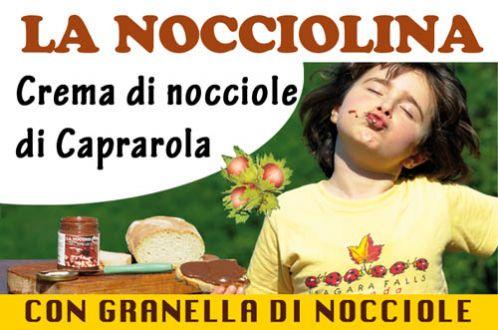 b_500_330_16777215_00_images_stories_articoli_nocciolina-granella.jpg