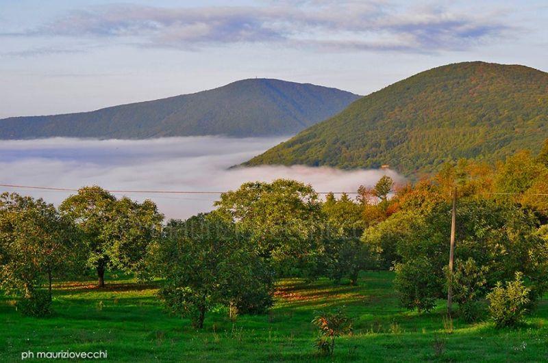Riserva Naturale del Lago di Vico avvolta dalle nebbie